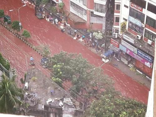 ცხოველთა სისხლით შეღებილი მდინარეები ბანგლადეშის დედაქალაქის ქუჩებში