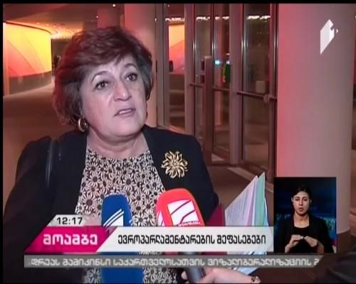 European MPs evaluate Georgian parliamentary elections