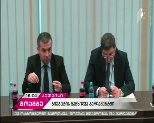 Parliamentary minority is listening to the Deputy Minister of Finance