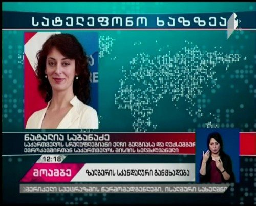 Ill-considered remark - Natalia Sabanadze assesses  Herbert Salber's statement