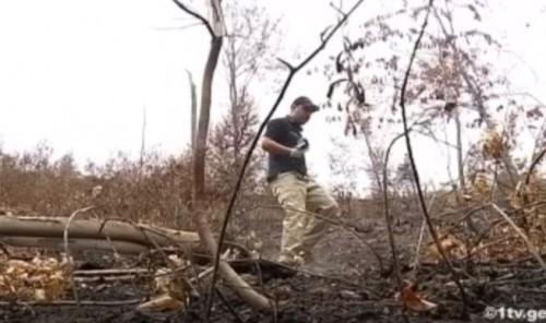 ბორჯომის ტყეში საგამოძიებო მოქმედებები მიმდინარეობს - [ვიდეო]