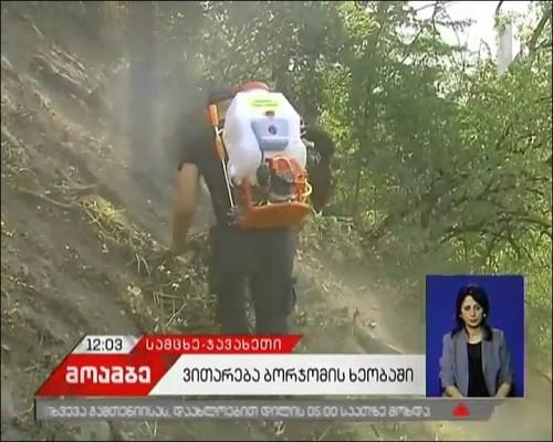 Fire localization works continue in Borjomi Gorge