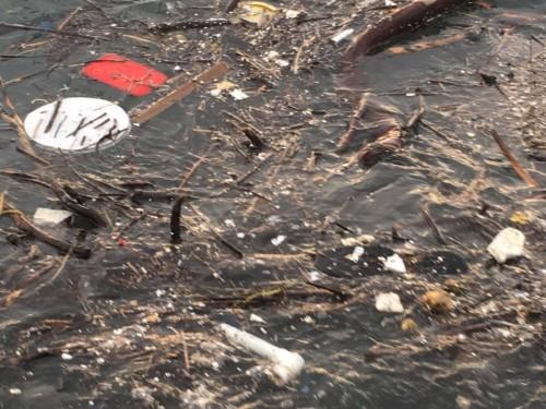 დაბინძურებული ზღვა კვარიათში - ფოტოამბავი
