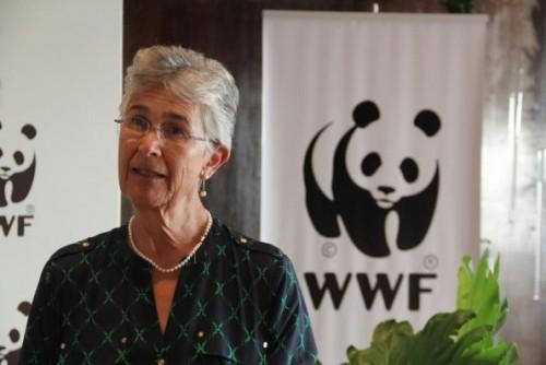 WWF-ის პრეზიდენტი იოლანდა კაკაბაძე: გახშირებული ხანძრები კლიმატის ცვლილებას უკავშირდება