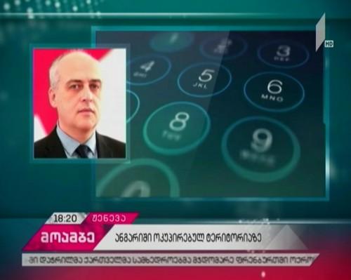 Georgia's occupied regions - spacial report was discussed in Geneva