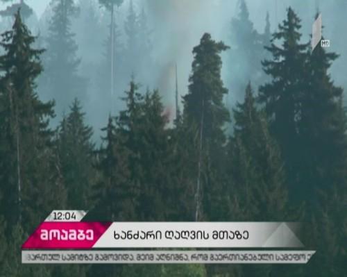 ხანძარი ადიგენის რაიონში - ღიღვის ტყის ფერდობზე მეხანძრე-მაშველები მუშაობენ