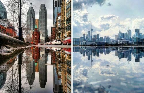 პარალელური მსოფლიო გუბეებიდან- მობილური ფოტოგრაფიის საოცარი შედეგი
