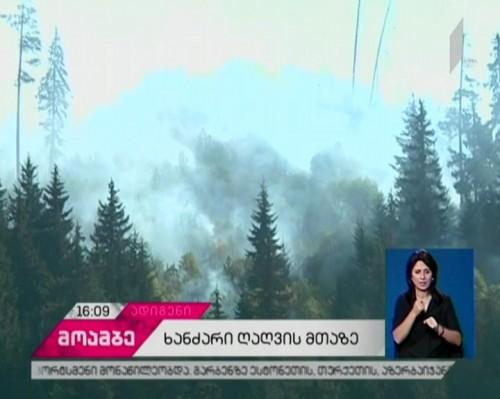 ადიგენის რაიონში, ღიღვის ტყის ფერდობზე ცეცხლის ღია კერები აღარ არის