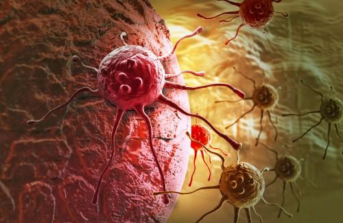 მეცნიერებმა კიბოს უჯრედების განადგურების სრულიად ახალი გზა აღმოაჩინეს