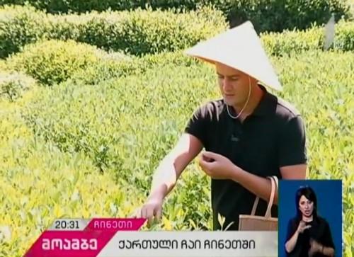 ჩინეთში ქართული ჩაის ექსპორტი იწყება