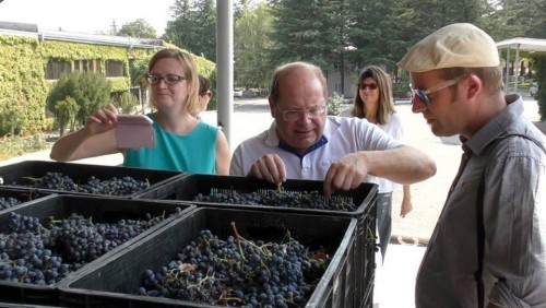 ბრიტანელი ღვინის პროფესიონალები ქართულ ღვინოს ეცნობიან