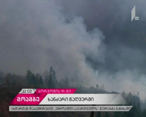 არჯევანიძის ტყეში გაჩენილი ცეცხლის ჩაქრობას ვერტმფრენი ცდილობს - რა ვითარებაა წაღვერში