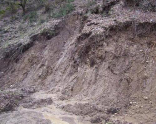 Heavy rain caused landslides in Adjara