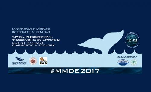 შავი ზღვის ბინადარი დელფინების კვლევაში ქართველ სპეციალისტებს ჰოლანდიელი მეცნიერები დაეხმარებიან