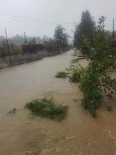 ურეკში ძლიერი წვიმის შედეგად ეზოები და საყანე ფართობები დაიტბორა