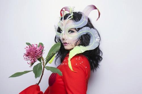 Björk უკვე თბილისშია