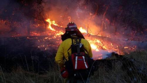 კალიფორნიაში ტყეში ხანძრების შედეგად დაღუპულთა რიცხვმა 40-ს მიაღწია