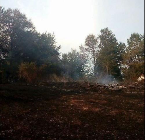 გომბორის უღელტეხილის დასავლეთ კალთაზე, სოფელ რუსიანის მახლობლად ხანძარია