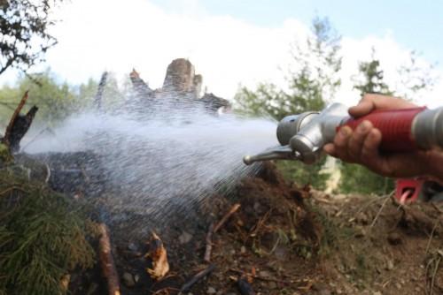 ქვემო ჩაილურის ტყეში გაჩენილი ხანძარი ლოკალიზებულია